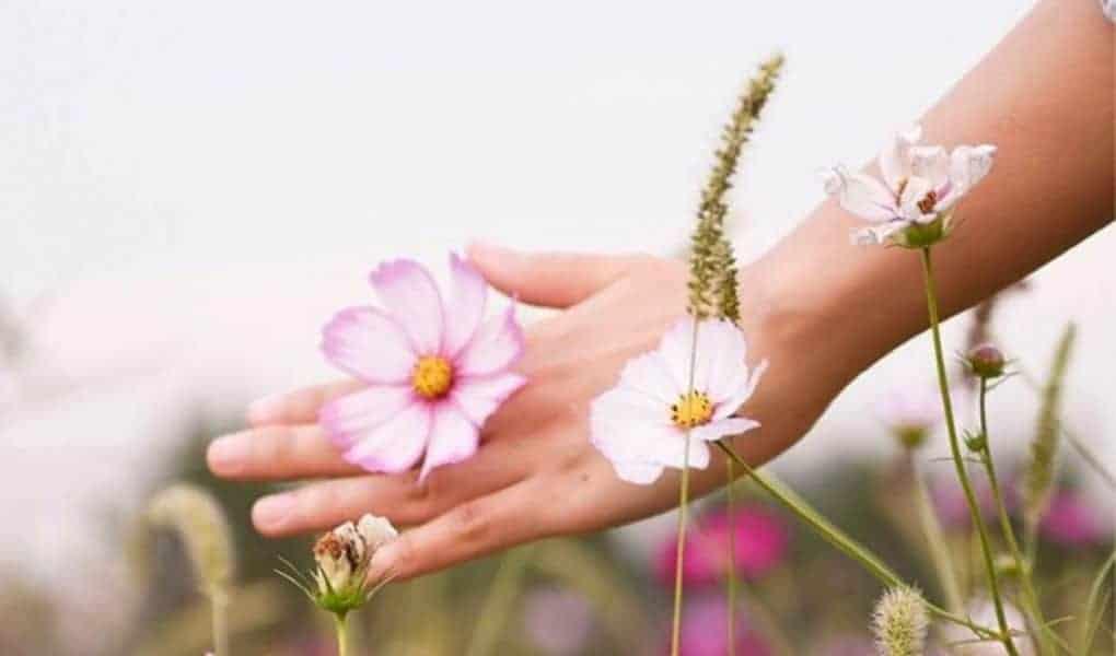 خمس وصفات طبيعية لجمال و صحة يديك - وصفات طبيعية لليدين - orchidfulifestyle