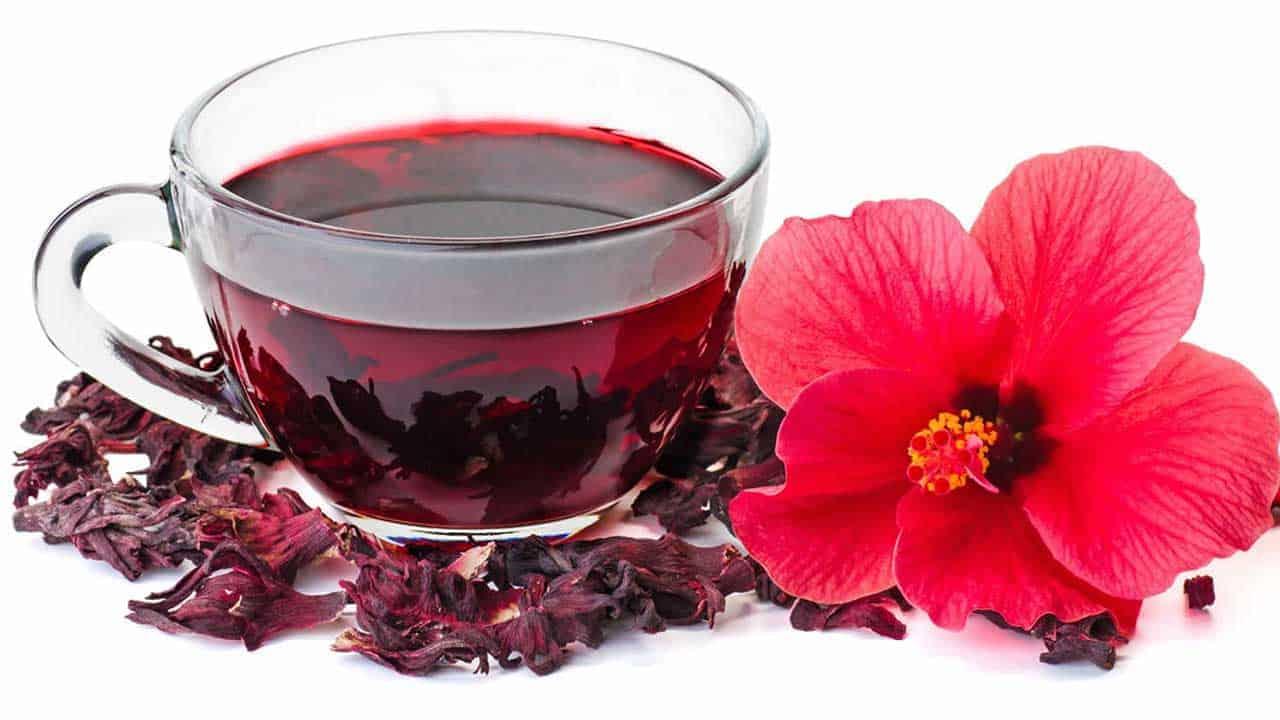 شاي كركديه - orchidfulifestyle