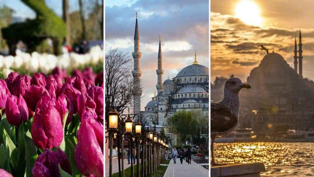 العيد في اسطنبول - Orchifulifestyle