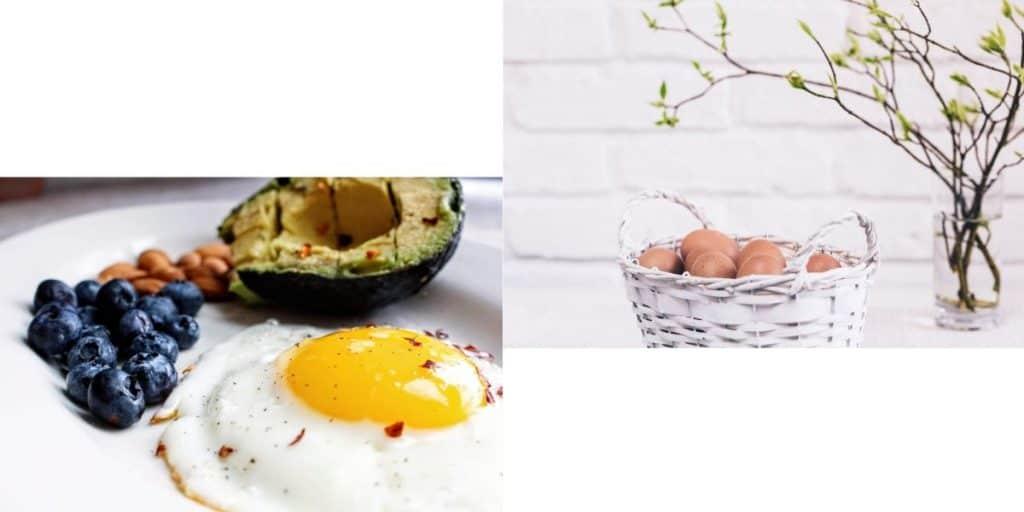 تناول البيض توازن الهرمونات - Orchidfulifestyle
