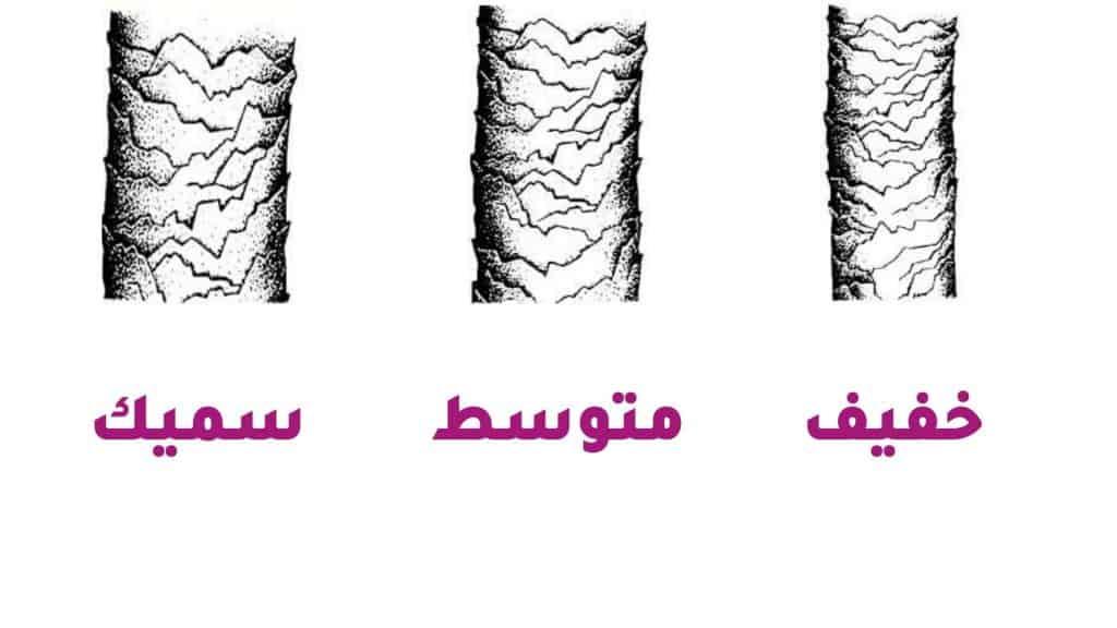 بنية الشعر - نوعية شعرك - orchidfulifestyle